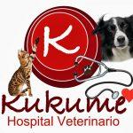 Formación práctica de Auxiliar de Veterinaria en el Hospital Veterinario Kukume